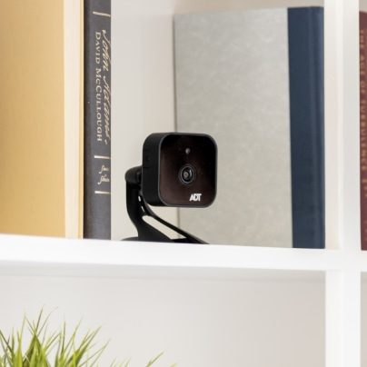 Salem indoor security camera